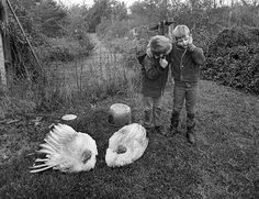 Emmet Gowin photographs at Pace/MacGill Gallery