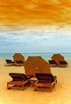 Professional Photographer Portfolio Florida United States Travel Scenic Skylines Landscape Portrait portfolio