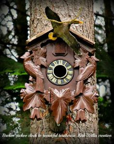 """Cuckoo Clock Bird House..(no site, found on FB.. a great DIY)..""""The clock was a $2 find at a garage sale...broken with most parts and attachments missing. I added a tin roof and several coats of polyurethane...the duck was a thrift store find. I glued the little door shut as the cuckoo bird was broken. A simple, fun project. Several birds have been in and out of it already, and it has only been up a week in our shady woods"""" - Kirk WIllis -Re-Scape dot com"""
