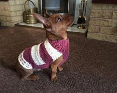 Made to order Dog Jumper, Dog Sweater, hand knitted in UK, with or without harness hole and optional pocket Dachshund, Waterproof Dog Coats, Jack Russell, Dog Jumpers, Dog Toys, Toy Dogs, How To Start Knitting, Whippet, Pull