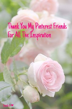 "Thank you all my dear Pinterest friends for sharing your wonderful pins with me. I love spotting that one ""special"" pin just waiting for it's new ""home"" ;) Going back and looking through my boards, I'm reminded of the charming group of ladies and gents that helped make my boards possible! Hugs to all of you! ❤"