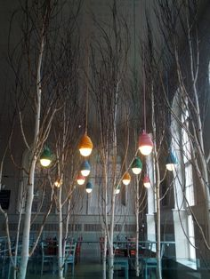 Super-Light at Zizzi Restaurant, York, U.K.   Yvonne Fehling and Jennie Peiz #tree