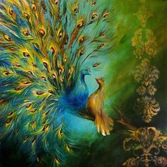 Birds Of A Feather Peacocks 3 Print By Dina Dargo