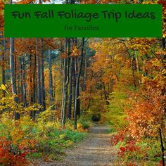 From A Renaissance Festival To Leaf Viewing By Bike Check Out These 5 Ways To Celebrate Fall In