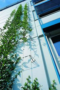 Living Facades - Architek Green Building Solutions | Architek