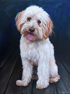 View examples of custom dog paintings by dog artist David Kennett. Each oil painting is handmade from your photo to capture your dog's personality. Custom Dog Portraits, Pet Portraits, Pictures To Paint, Dog Pictures, Golden Retrievers, Mini Goldendoodle, Goldendoodles, Bermese Mountain Dog, Black Labrador Retriever