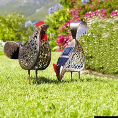 2-Solar-Hens from Lakeland