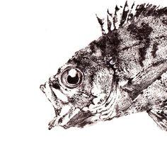 GYOTAKU print traditional Japanese fish art  by FishingForGyotaku on Etsy
