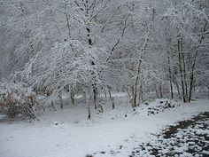 Poconos in the winter...beautiful.