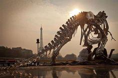 Life Size Chrome T-Rex Sculpture in Paris