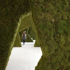 Oslo architects PUSHAK installed an indoor terrain of moss arches and screens for the London Festival of Architecture (2010)