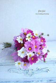 コスモスのブーケ cosmos bouquet
