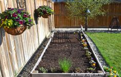 Vegetable Gardening in Raised Beds and Containers for my climate