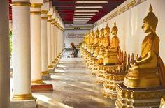 Meditation, stilhed og stof til eftertanke   Wat Phra That Phanom, Thailand   16. - 25. januar 2015 - Rejs med til Thailand på et retræte der sætter dig i fokus, dér hvor du har brug for transformation i dit liv. Du vil få nogle redskaber til personlig udvikling, der kan gavne dig i din hverdag. Al undervisning foregår i templet That Phanom.