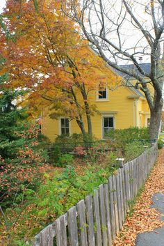 Love Yellow Houses.  I grew up in a 1930s Yellow House.  My dad was color blind and yellow was one of the colors he could really see!  So our house was always Yellow!