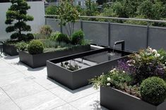 An elegant space with a beautiful Zen water fountain, bushes and flowers all in magnificent modern large boxed concrete planters with high sides creating an environment to relax in yet large enough to grab your ice tea and garden sheers to go  piddle around in . #luxuryzengarden