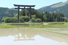 世界遺産の聖域 ~和歌山県 熊野古道を歩いてみませんか   キナリノ