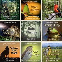 Enjoy these bird and insect soundscape recordings gathered in the forests and…