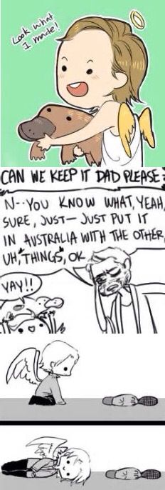 """XD """"Just-just put it in Australia with the other...erm....things ok?"""" LOL IM DYING"""