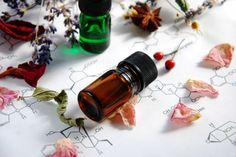 13 Beautiful Essential Oil Blends for Your Diffuser