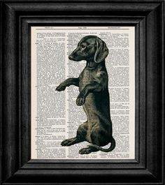 Dachshunds Dictionary Book Art from Etsy. What a good dog! #dog #dachshund