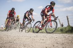 teamgiantalpecin:  Bert de Backer | Paris-Roubaix 2015