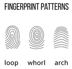 This easy kids' fingerprint activity helps them learn how to take their own fingerprints. They'll h Preschool Science, Science Classroom, Science Fair, Science For Kids, Scout Activities, Preschool Activities, Escape Room, Fun Learning, Teaching Kids