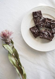 "This ""false fudge"" recipe is incredible, but might not sound as good to people less enthusiastic about raw food. The texture is perfect but it isn't very sweet. Fudge Recipes, Raw Food Recipes, Chocolate Recipes, Vegetable Recipes, Dessert Recipes, Cooking Recipes, Chocolate Fudge, Desserts Crus, Gluten Free Desserts"