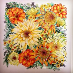 Depth and shading colored pencils flowers in warm colors. Magical Jungle. #leiladuly #floribunda #bayan_boyan