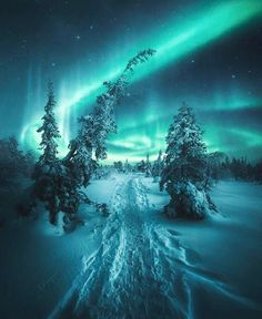 hintergrundbilder natur See the Northern Lights Beautiful Sky, Beautiful Landscapes, Beautiful World, Nature Pictures, Cool Pictures, Beautiful Pictures, Beautiful Photos Of Nature, See The Northern Lights, Northern Lights Wallpaper