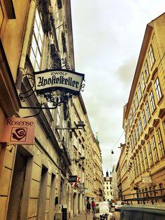 Zwölf Apostelkeller Cool, Broadway Shows, Goth Style, 15th Century, Vienna, Wine Cellars, Restaurant, Urban, Celebs
