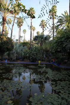 Jardin Majorelle in Marakesh.