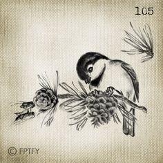 Hermoso pájaro Digital Vintage grande imagen Descargar hoja Transfer a Totes almohadas toallas de té t-shirts 105