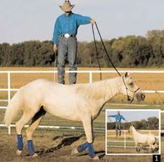 Clinton Anderson: Mount Your Horse From a Fence