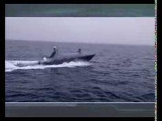 Elbit Systems / Silver Marlin USV