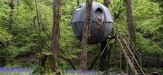 Obligatory Canopy and Stars amazing place to stay - Lost Meadow Tree Tent   Treehouse in Cornwall   Canopy & Stars