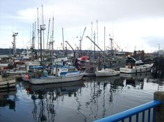 Boats down by the pier in downtown Campbell River.