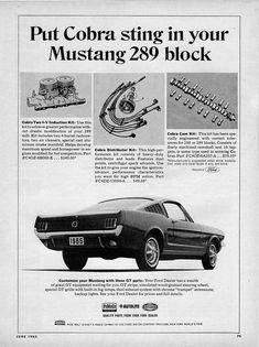 Mustang Cobra Ad