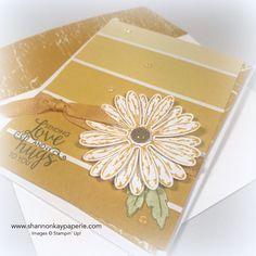 Introducing Daisy Delight Cards Ideas - Shannon Jaramillo Stampin Up Demonstrator Daisy Delight Stampin' Up, Paint Chip Cards, Stampin Up Catalog, Stamping Up Cards, Pretty Cards, Flower Cards, Greeting Cards Handmade, Homemade Cards, Birthday Cards