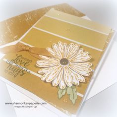 Introducing Daisy Delight Cards Ideas - Shannon Jaramillo Stampin Up