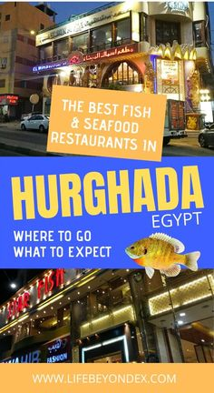 What are the best fish & seafood restaurants in Hurghada Egypt? I went to try five of the best seafood restaurants in Hurghada to give you tips where to go and what to expect. Holidays In Egypt, Hurghada Egypt, Best Seafood Restaurant, Egypt Culture, Egypt Fashion, Egyptian Food, Travel Advise, Visit Egypt, Egypt Travel