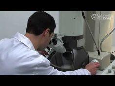 Microbiologia: Aula 9 - Microscopia eletrônica de transmissão - YouTube