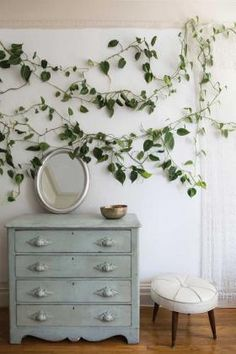 """This photo shows climbing vines, Philodendron """"Brazil,"""" in the book """"Rooted in Design"""" by Tara Heibel and Tassy de Give. The authors argue that houseplants can be low-maintenance, affordable and definitely worth the trouble, a beautiful and creative element in a home's decor.  Ramsay de Give / Maria Lawson / Penguin Random House / Ten Speed Press / AP Photo"""
