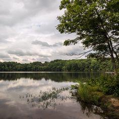 Landscape, Burke Lake