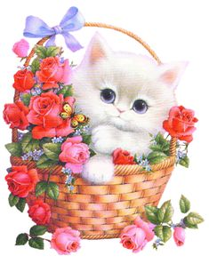 Hello pictures and quotes Cute Baby Animals, Animals And Pets, Hello Pictures, Kitten Images, Gato Gif, Image Chat, Glitter Graphics, Cute Cats And Kittens, Cat Art