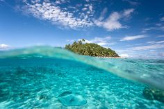 i wanna go in the coral reefs & swim around. Deep Blue Sea, Rest And Relaxation, Crystal Clear Water, Sea And Ocean, Underwater World, Flowers Nature, Bora Bora, Dream Vacations, Beautiful Places
