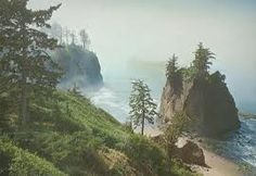 Patrick's Point, CA. Hands down, best camping spot. Amazing to wake up and have towering redwoods above you and the ocean crashing beside you!