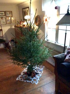 Our own tree waiting for it's decorations.