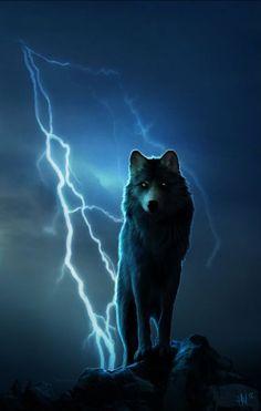 Fantasy Wolf, Fantasy Art, Teen Wolf, Wolf Craft, Wolf Life, Wolf Costume, Wolf Images, Wolf Artwork, Wolf Spirit Animal