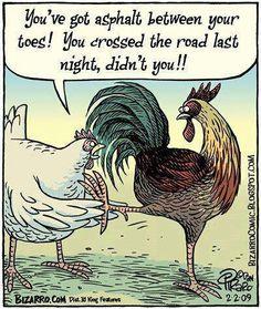 """You've got asphalt between your toes! You crossed the road last night, didn't you!!"" Bizarro by Dan Piraro"